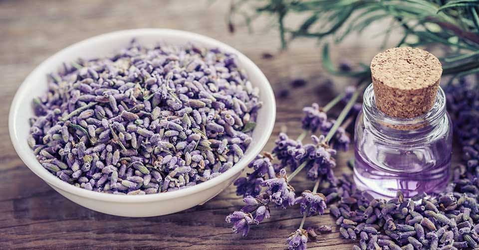 natural remedy for sunburn lavender